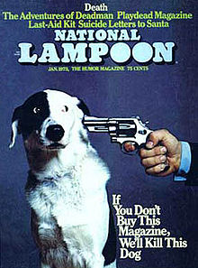 Natlampdog